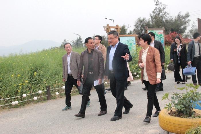 市委常委、组织部长张明超一行来岱开展乡村振兴专题调研